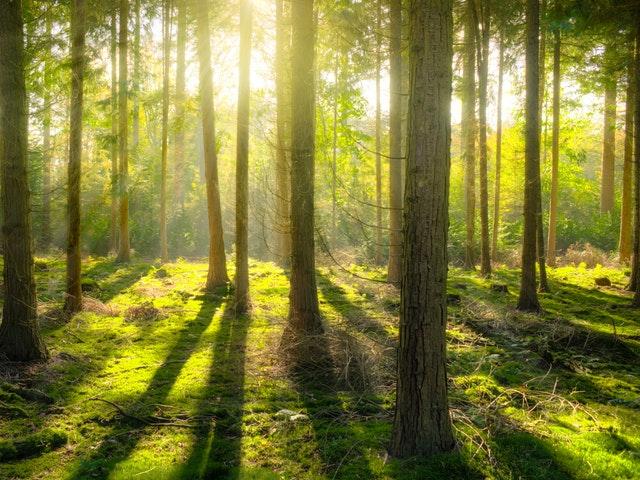 Suomen luonnosta löytyy kuvauspaikkoja